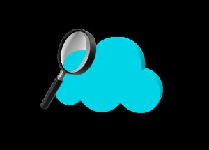 Oz Web App - Audit